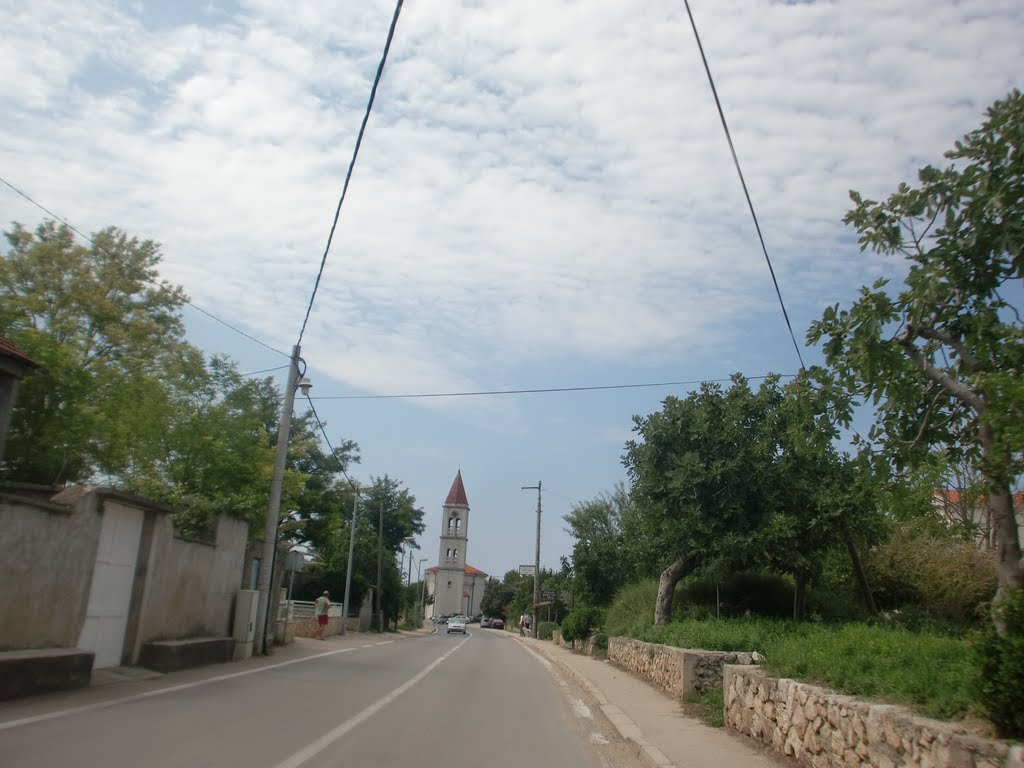 Privlaka1